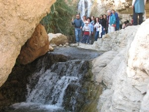 Ein Gedi  - Wadi David
